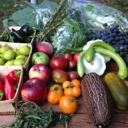 Produce - Friday Pickup Only